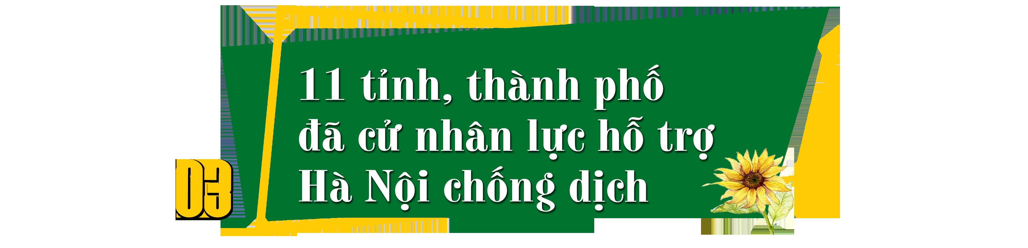 Hà Nội vận dụng hai mũi giáp công, quyết giữ vùng xanh cho Nhân dân