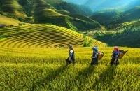 Việt Nam làm 2 phim tài liệu nghệ thuật quảng bá du lịch